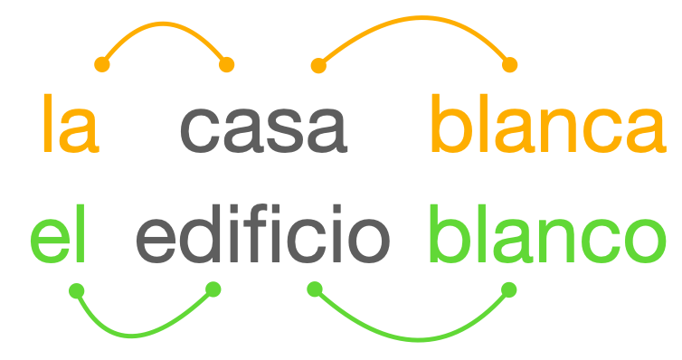 A schematic representation of nominal concord. There are orange-colored lines connecting the feminine noun casa 'house' to its modifiers. There are green-colored lines connecting the masculine noun edificio 'building' to its modifiers.